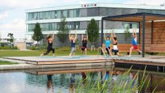 This image shows employees practicing Yoga at CODICO Central Park.